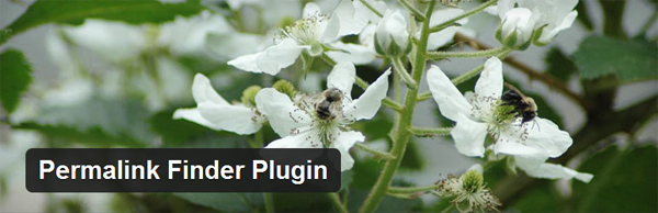 WordPress固定链接转向插件Permalink Finder